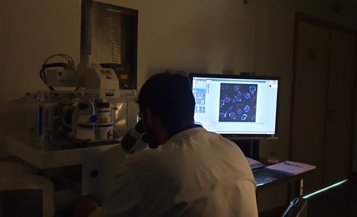 Labfit participa em projeto de nanotecnologia (DREAM) do Programa UT Austin Portugal